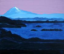 Blaue Stunde am Fjord  von Birgit Oehmig