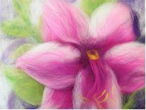 Blüte von Birgit Albert