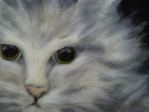 Katze von Birgit Albert