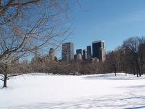 Central Park von Stefan Schulz