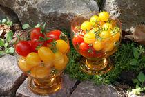Tomatencocktail by Nikola Hahn