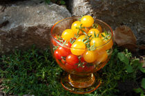 Tomatencocktail 2 von Nikola Hahn
