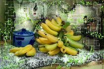 Bananen im Gitter von Nikola Hahn