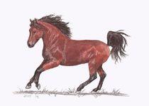 Das Braune Pferd von lona-azur
