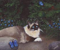 Katze von lona-azur