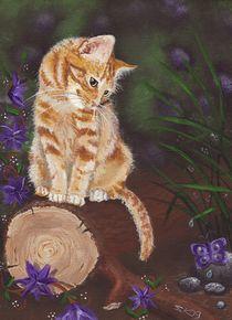 rote Katze by lona-azur