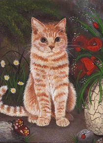 Rote Katze von lona-azur