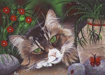 Katzenbild by lona-azur