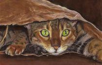 Bengale Katze  von lona-azur
