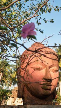 Buddhagesicht von Premdharma S. Gartlgruber