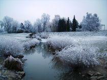 Winter am Rhein by rosenlady
