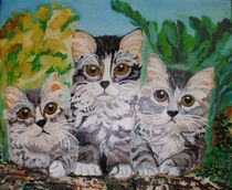 Drei neugierige graue Katzen by rosenlady