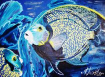 Kaiserfische by rosenlady