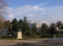 Palmen und verschneite Berge von Raymond Zoller