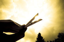 catching the sun by Philipp Kuhnke