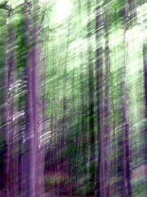 Light 4 von Patricia Ausweger Matz