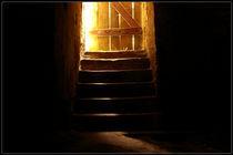 Die Tür zum Licht von Marcus Finke