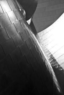 Disney Hall by Marcus Finke