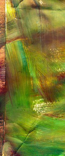 Grün von cania