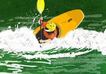 White Water, Yellow Kayak II by Phill Evans