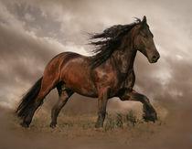 HorsePower von Violetta Zajac