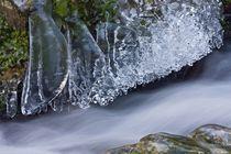 Winter von Wilfried Martin