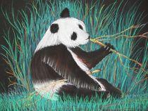 Panda von Bernd Musti