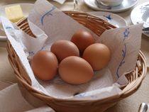 Frühstücks Eier von Dennis Grütter