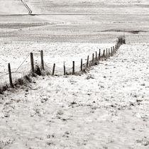 winterzaun von Michael Bauer