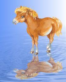 Pony Melodie von Daniela Pohl