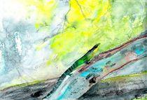 Smaragdechse von Eva Pötzelsberger