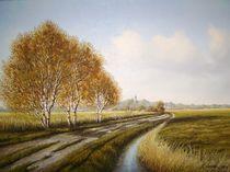 Moorlandsweg bei Jever (Friesland) von Lothar Struebbe