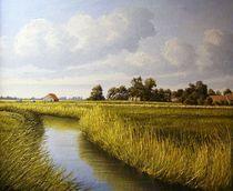 Landschaft bei Jever   Friesland