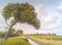 Landschaft bei Neuharlingersiel (Ostfriesland)