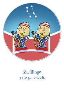 Sternzeichen Zwilling  by droigks