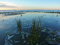 Sonnenaufgang am Steinhuder Meer von Ralf Schröer