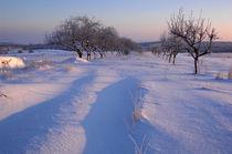 Winterweg by Anne Silbereisen