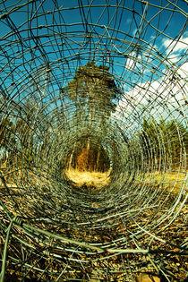 Maschendraht im Wald von Lutz Wallroth