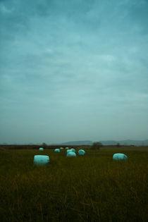 Strohballen von Lutz Wallroth