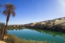 Um El Ma - Wasser in der Wüste by werner gaisbauer