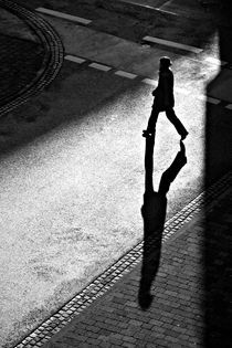 shadow lines by Walter Layher