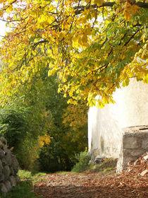 Herbsteinzug by christian grünberger TIAN GREEN