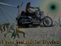 Freedom Rider von Don Creativo Sensitivo