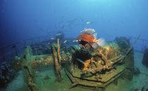 Feuerfisch am Wrack MV Kudhi Maa, Malediven von Heike Loos