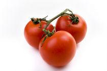 Tomaten by Ralf Kochems