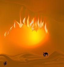 Wüstenwanderer von Yvonne Habenicht