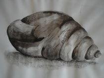 Muschel by farbenfroh1