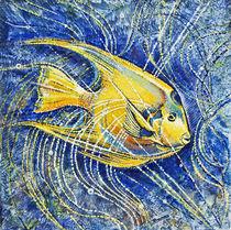 Diademfisch von Olga Krämer-Banas