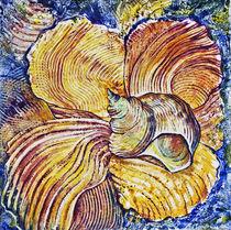 Muscheln by Olga Krämer-Banas