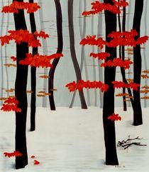 Winterbuchenwald by Karin Stein